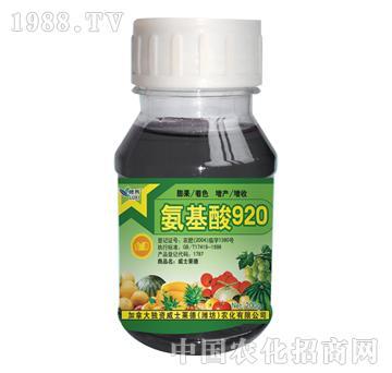 威士莱德-氨基酸920