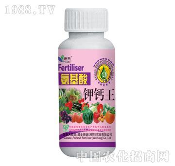 威士莱德-氨基酸钾钙王