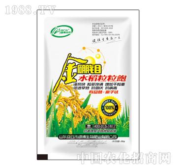 绿博-金硼钼水稻粒粒饱