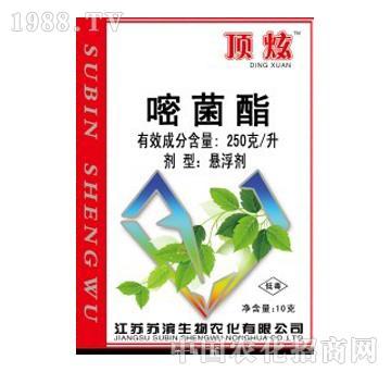 苏滨-顶炫-嘧菌酯