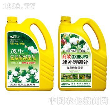 茂生氨基酸海藻纯高效速补钾硼锌海藻酸加强型