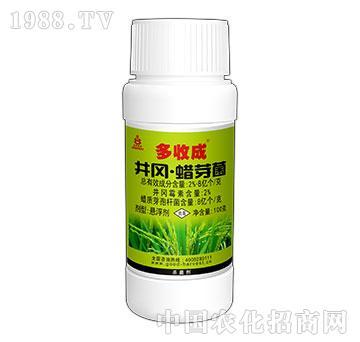 10%井冈蜡芽菌-多收成-好收成