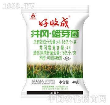 20%井冈蜡芽菌(水稻版)-好收成
