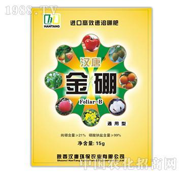 进口高效速溶硼肥-金硼-汉唐环保