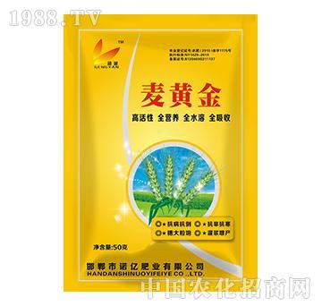 麦黄金-诺亿肥业