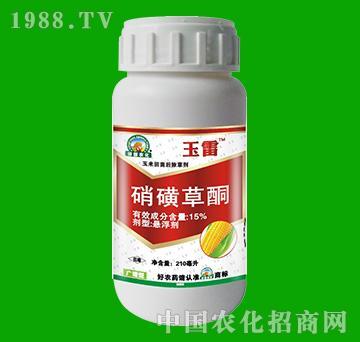 15%硝磺草酮-玉雷-田园农化
