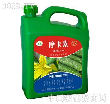 黄瓜抑菌精华液-摩卡素-强芯国际