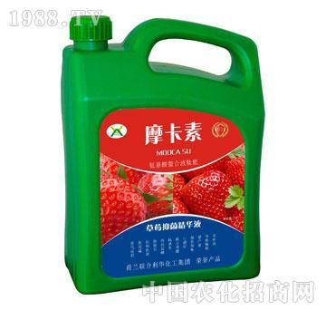 草莓抑菌精华液-摩卡素-强芯国际