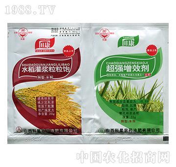 水稻灌浆粒粒饱+超强增效剂-科星