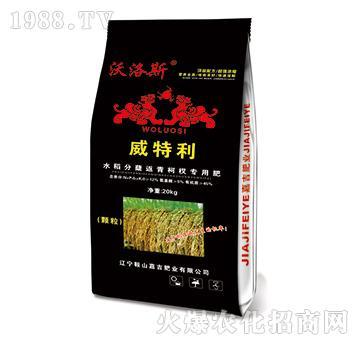 水稻分蘖返青柯杈专用肥-威特利-嘉吉肥业