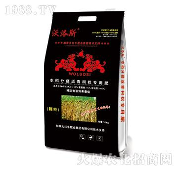 水稻分蘖返青柯杈专用肥-沃洛斯-嘉吉肥业