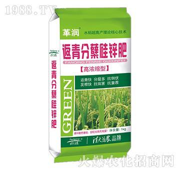 返青分蘖硅锌肥-革润-清大益农