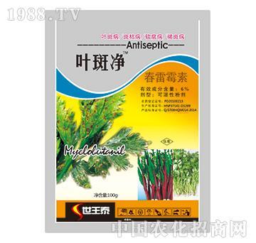 6%春雷霉素-叶斑净-世王泰