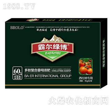 西红柿专用叶面肥-霸尔绿博
