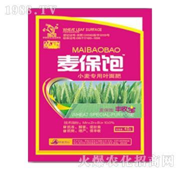小麦专用叶面肥-麦保饱-力克化工