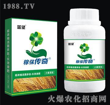 小麦专用超浓缩活菌多肽-长效液肥-稼保传奇-蓝望