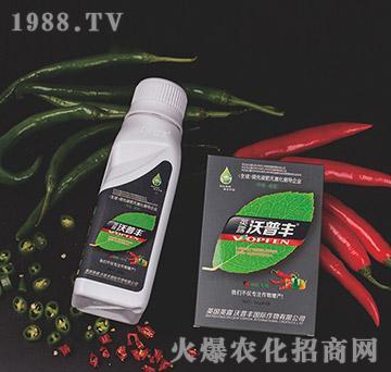 辣椒专用氨基松脂菌露母液叶面肥-沃普丰