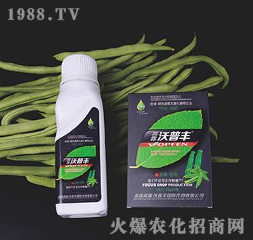 豆角专用氨基松脂菌露母液叶面肥-沃普丰