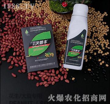 花生大豆专用氨基松脂菌露母液叶面肥-沃普丰