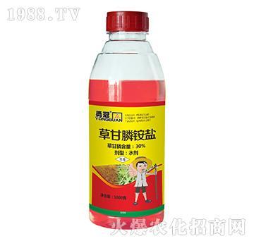 30%草甘膦铵盐1000克-勇冠乔迪