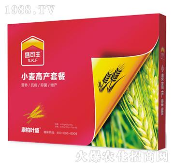 小麦高产套餐-盛可丰-康柏叶盛