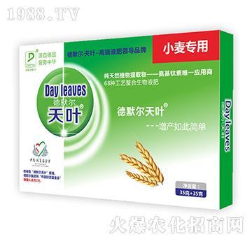 小麦专用叶面肥-德默尔天叶