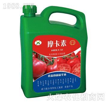 番茄抑菌精华液-摩卡素-强芯国际