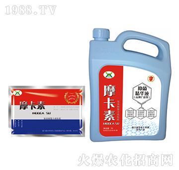 高钾抑菌精华液(壶加袋)-摩卡素-强芯国际