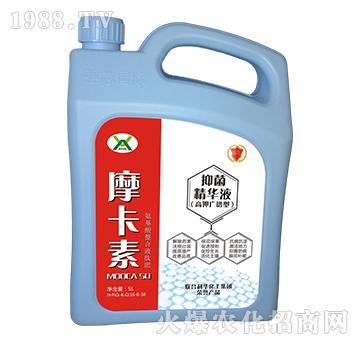 高钾抑菌精华液(广谱型)-摩卡素-强芯国际