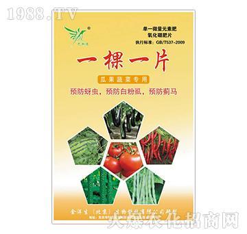 瓜果蔬菜专用-氧化硼肥片-精诚农业