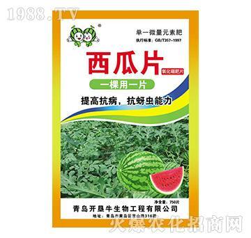 西瓜片750片-氧化硼肥片-精诚农业