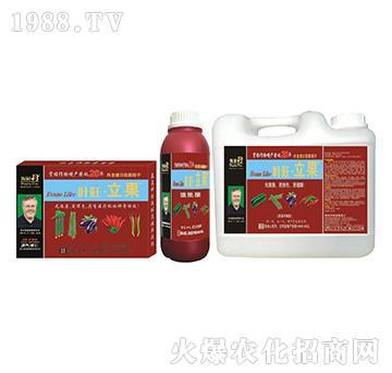 拉长作物智能型增产精华液-叶旺・立果-海俐丹