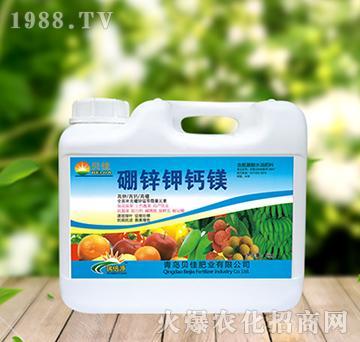 硼锌钾钙镁-正达生物
