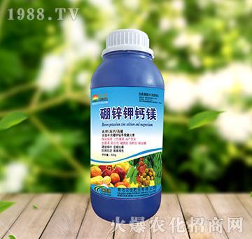 硼锌钾钙镁(瓶)-正达生物