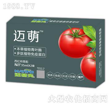 西红柿需配叶面肥-迈萌-迈易夫