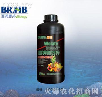 高钾硼钙锌-巧遇-百润惠邦