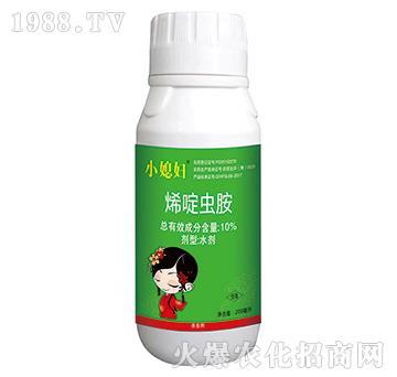 白粉虱烟粉虱特效药-10%烯啶虫胺-小媳妇
