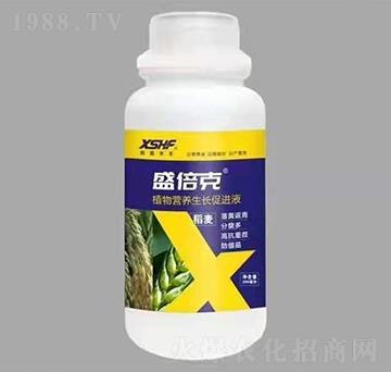 稻麦专用植物营养生长促进液-盛倍克-新盛禾丰