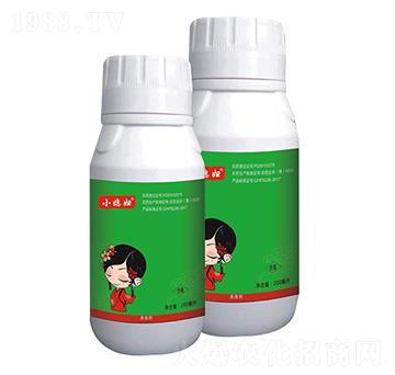 白粉虱烟粉虱药-10%烯啶虫胺-小媳妇