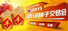2019武汉种子交易会