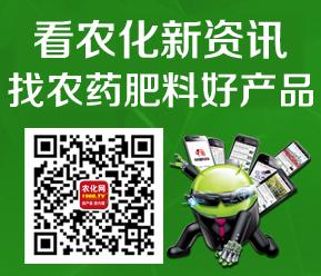 微信扫一扫,关注1988.TV官方微信看精彩资讯!