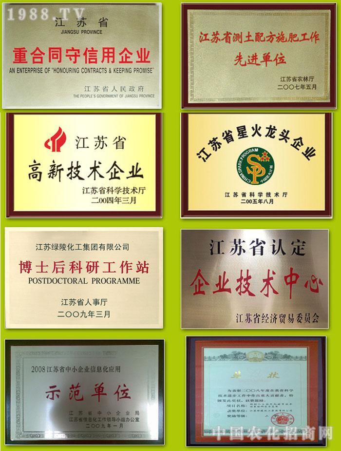 江苏绿陵化工集团