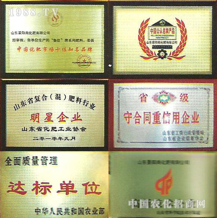 山东景阳岗化肥有限公司荣誉展示