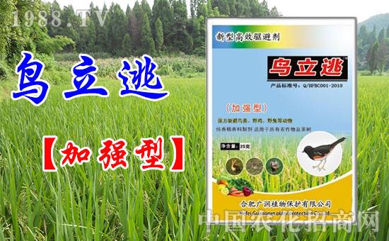 合肥广润隆重亮相2015河南农药会 展位号为:520