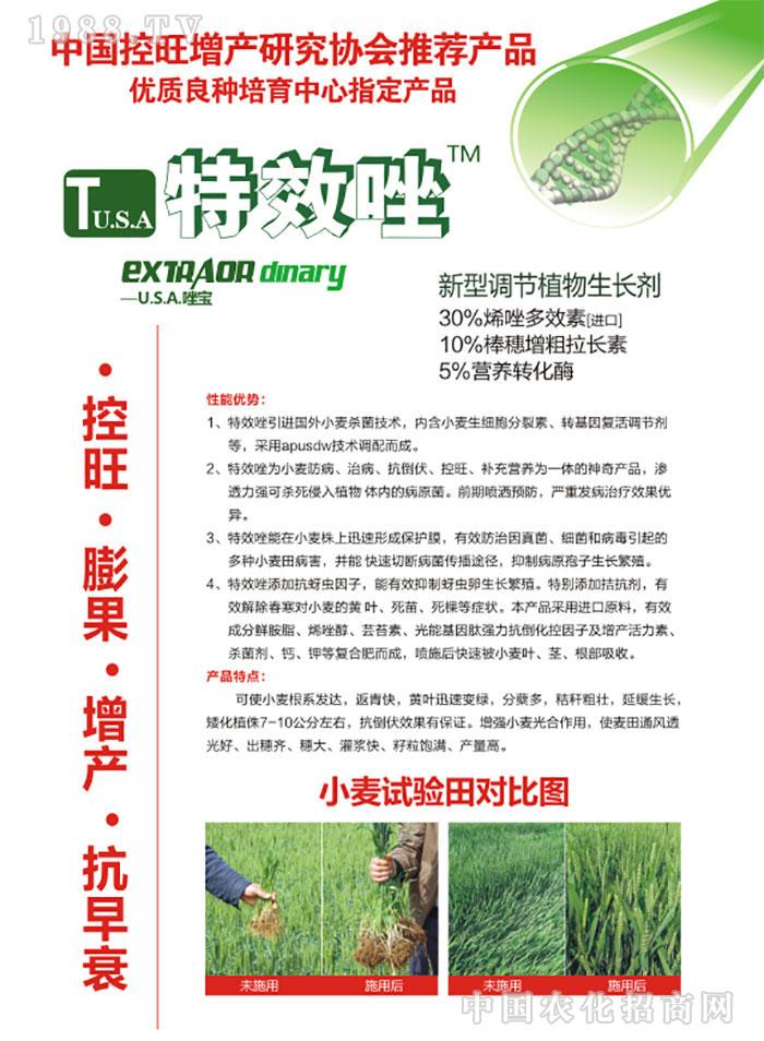 郑州市胜丰农业科技开发有限公司
