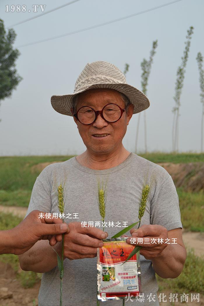 石家庄市三旺农业科技有限公司