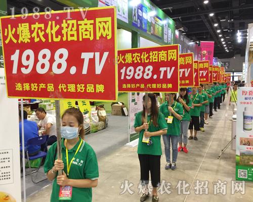 2017第15届南宁农资会谁最火?当属1988.TV!