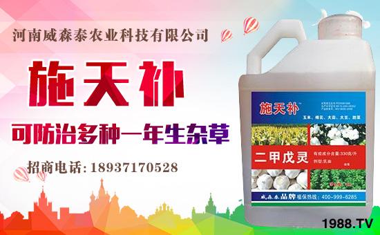 河南威森泰农业科技有限公司8