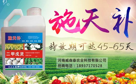 河南威森泰农业科技有限公司10