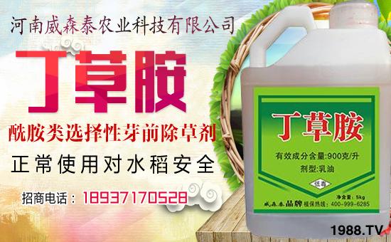 河南威森泰农业科技有限公司3